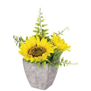 Sunflower Centerpiece in Pot