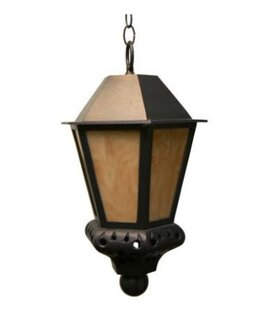 Phillipstown 1-Light Outdoor Hanging Lantern by Alcott Hill