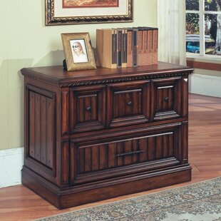 Darby Home Co Fayette 2-Drawer Lateral Fi..