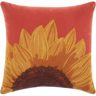 Moreland Indoor/Outdoor Throw Pillow