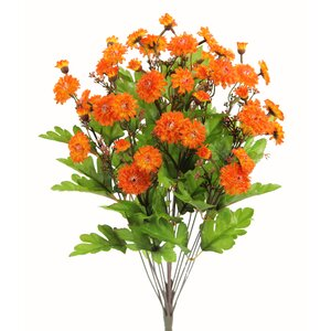 Bloom Mum Floral Arrangement