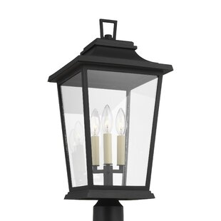 Old Down Outdoor 3-Light Lantern Head by Charlton Home