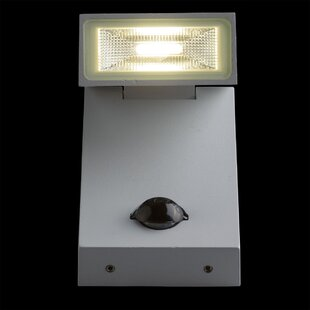 Canady 1 Light LED Flood Light By Sol 72 Outdoor