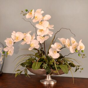 Silk Orchid In Pedestal Bowl Silk Orchid In Pedestal Bowl By Floral Home Decor