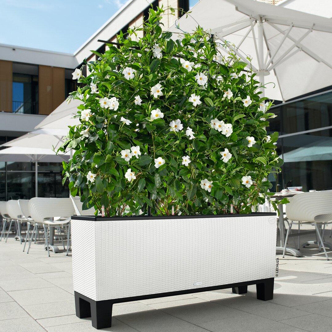 Trio Self-Watering Planter Box