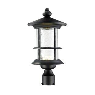 Crow 18-Light LED Lantern Head by Breakwater Bay