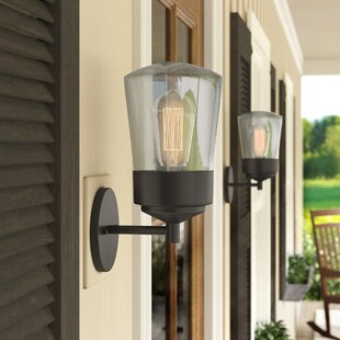 Zola 1-Light Outdoor Sconce