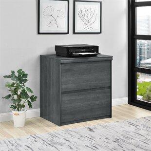 Wrought Studio Elkin 2-Drawer File Cabinet