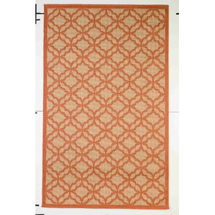 Kevan Coral Indoor/Outdoor Area Rug