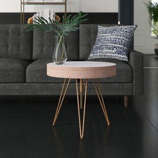 Mount Barker Coffee Table by Mercury Row