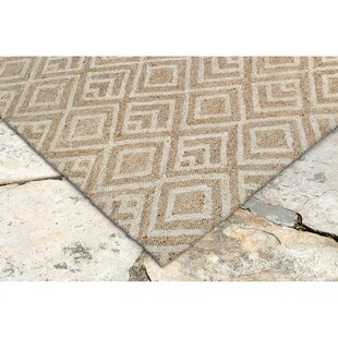 Chamness Hand-Tufted Neutral Indoor/Outdoor Area Rug