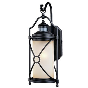 Alcott Hill Helvey Dualux® 1-Light Outdoor Wall Lantern