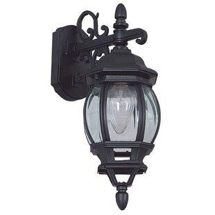 Astoria Grand Godbey 1-Light Outdoor Wall Lantern