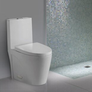 Kevsal Inc Nevelle Elongated One-Piece Toilet