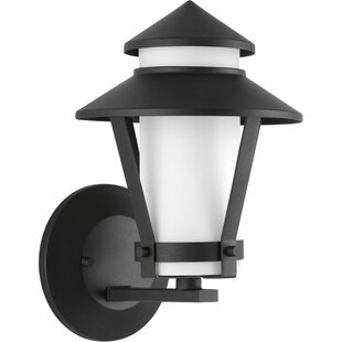 Bargain Palice 1-Light Outdoor Sconce By Red Barrel Studio