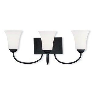 Alcott Hill Grady 3-Light Vanity Light