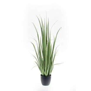 Artificial Yucca Plant In Pot By The Seasonal Aisle
