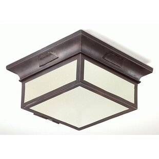 Theodore 2-Light Flush Mount by Darby Home Co
