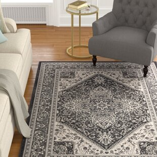 Pickerel Charcoal/Gray Area Rug by Astoria Grand