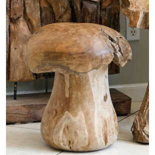 Top Reviews Mushroom Stool By Garden Age