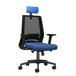Godin Ergonomic Mesh Desk Chair By Ebern Designs