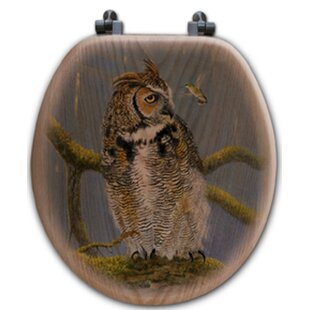 WGI-GALLERY Fearless Owl and Hummingbird Toilet Seat