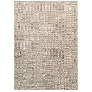 Hofstetter Gray/Beige Indoor/Outdoor Area Rug