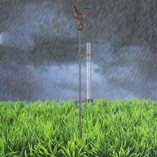 Meryl Rain Gauge By Brambly Cottage