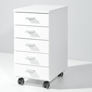 5 Drawer Roll Container By 17 Stories