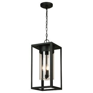 Hadassah 3-Light Outdoor Hanging Lantern