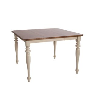 Beachcrest Home Bridgeview Counter Height Extendable Dining Table