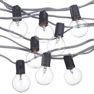 Pinney 10 ft. 10-Light Globe String Lights by Williston Forge