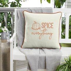 Outdoor Pumpkin Pillow Wayfair