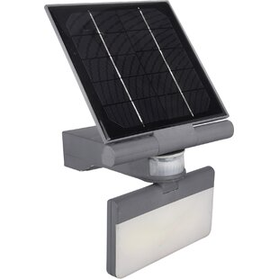Pacific Accents Solar 100 LED Flood Light