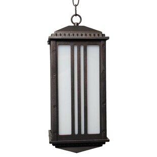 Alcott Hill Petrey 1-Light Outdoor Hanging Lantern