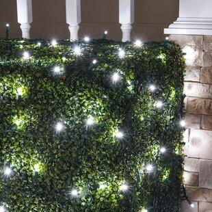 Outdoor christmas net lights wayfair 100 lamps led christmas net light mozeypictures Gallery