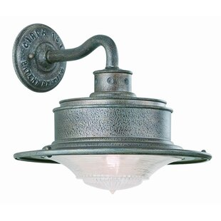 Theodore 1-Light Outdoor Barn Light