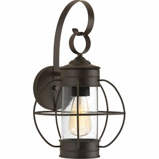 Nayeli 1-Light Metal Wall Lantern