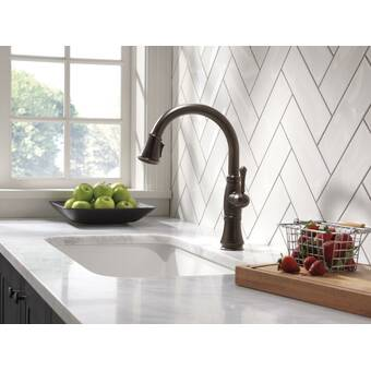 K 99261 Cp Sn Vs Kohler Artifacts Pull Down Faucet With Docknetik And Berrysoft Promotion And Masterclean Technologies Reviews Wayfair