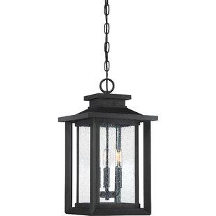 Alcott Hill Higuchi 3-Light Outdoor Hanging Lantern
