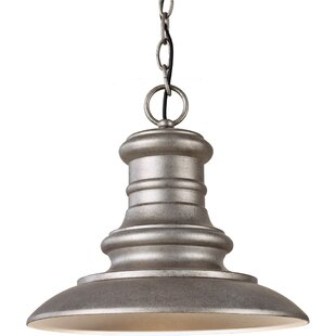 Brayden Studio Colunga 1-Light Outdoor Pendant