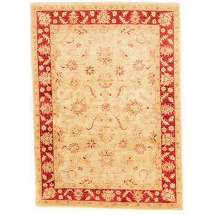Clever Hand Knotted Wool Beige/Red Rug by Rosalind Wheeler