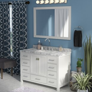 Raishon 48 Single Bathroom Vanity Set with Mirror By Willa Arlo Interiors