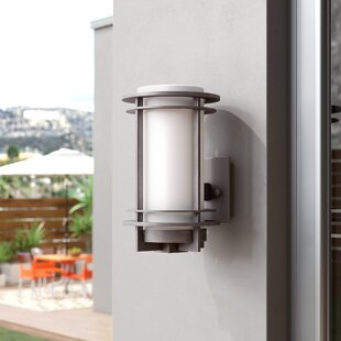 Nicholas 1-Light Outdoor Sconce