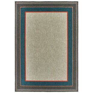 Freeman Casual Gray Indoor/Outdoor Area Rug