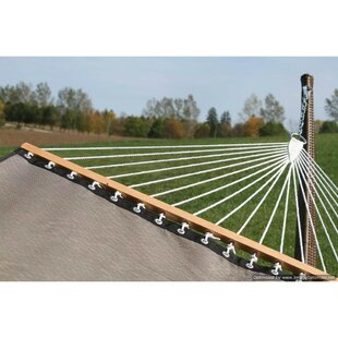Chesterle Poolside Double Tree Hammock by Freeport Park