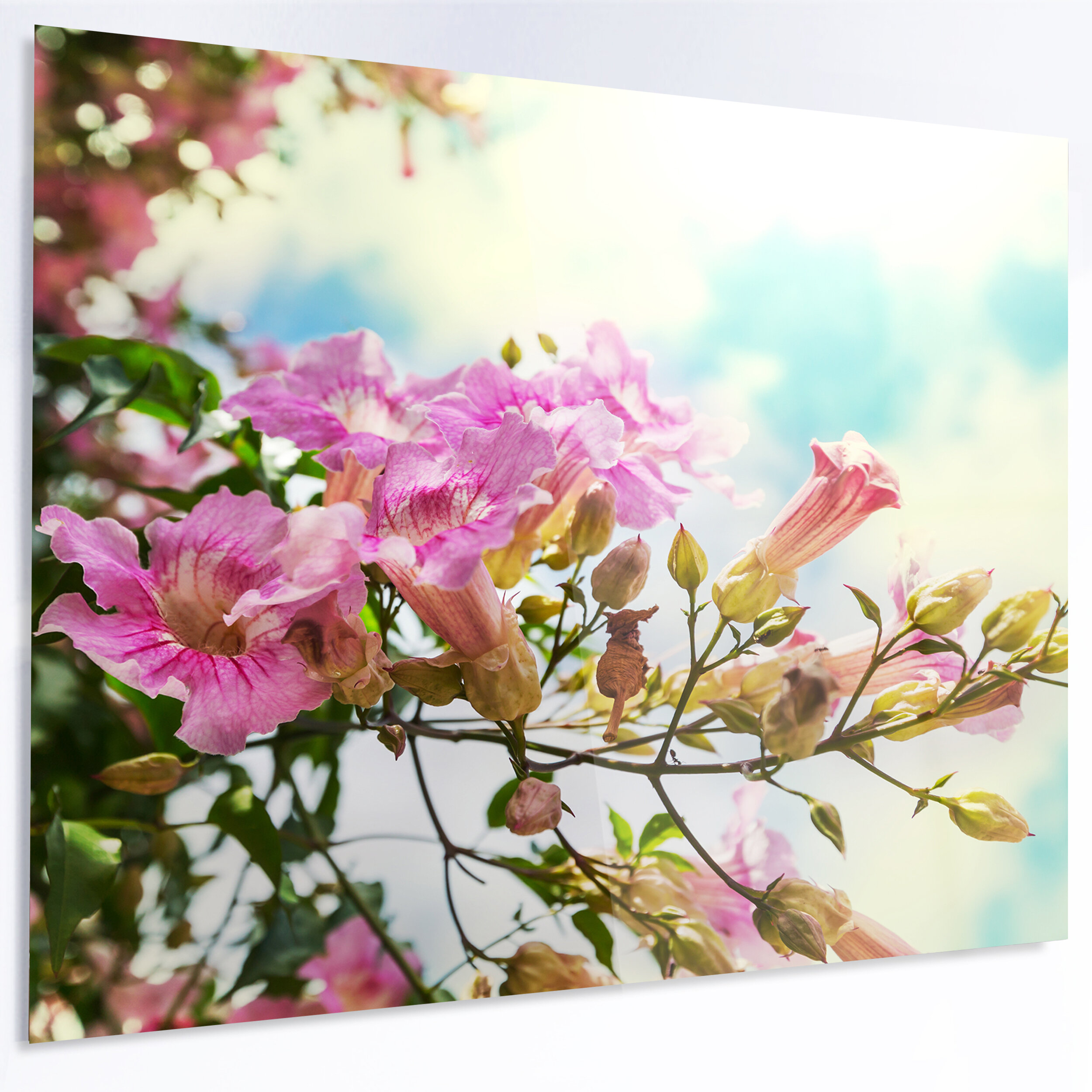 Designart pink flowers in hawaiian garden photographic print on designart pink flowers in hawaiian garden photographic print on metal wayfair izmirmasajfo