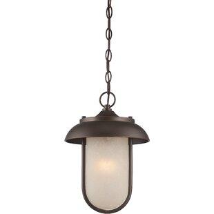 Gracie Oaks Bentleyville 1-Light Outdoor Pendant