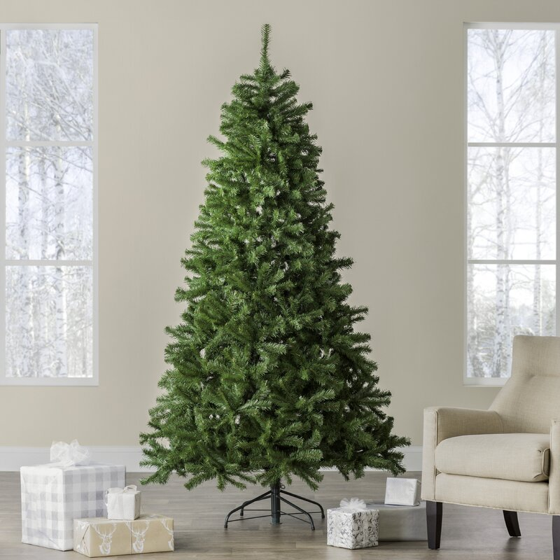 Beachcrest Home Green Spruce Artificial Christmas Tree & Reviews | Wayfair - Beachcrest Home Green Spruce Artificial Christmas Tree & Reviews