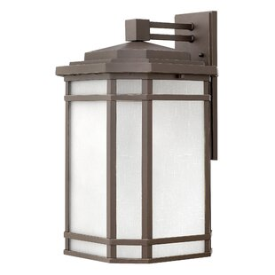 Darby Home Co Chianna Outdoor Wall Lantern